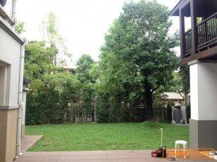 ขายบ้านเดี่ยว หมู่บ้านณุศาศิริ ราชพฤกษ์ ที่ดิน 200 ตารางวา 700 ตารางเมตร 5 ห้องนอน 7 ห้องนำ้