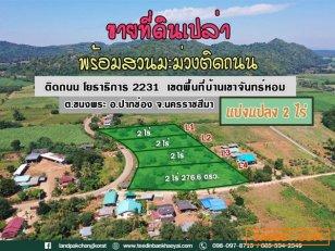ขายที่ดินแบ่งแปลงขายเขาใหญ่ #พร้อมสวนมะม่วงติดถนน #ถูกที่สุดในย่านนี้ #วิวเขาล้อมรอบ