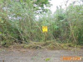 22406 ที่ดินใกล้เทศบาลแม่ก๊า สันป่าตอง เชียงใหม่ Land MaeKa Sanpatong Chaingmai THAILAND