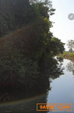 ที่ดิน จ.อุบลราชธานี อ.วารินชำราบ ติดลำห้วยคลองยอดมีน้ำใช้ตลอดปีสามารถทำการเกษตรได้