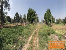 ขายถูกที่ดิน 22-3-28 ไร่ (9,128 ตรว.) ถนนสุขุมวิท(เข้าซ.บางละมุง 25) ซ.ตะเคียนเตี้ย16 หน้ากว้าง157เมตร ลึก 240 เมตร อ้อน 095-8789-536