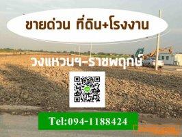 โรงงาน/โกดัง นนทบุรี>>โครงการเริ่มต้นที่แปลงละ100 ตารางวา จนถึงเป็นไร่