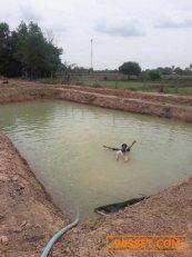 ขายด่วน ที่ดินเป็นตาน้ำตักแรกแมคโฮเจอน้ำเลย เนื้อที่ 4 ไร่ 1งาน 45 ตร.วา ในตำบลบ้านธาตุ อำเภอเพ็ญ