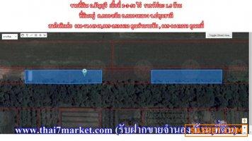 ขายที่ดิน ถ.ธัญบุรี เนื้อที่ 2-3-50 ไร่  ราคาไร่ละ 1.5 ล้าน
