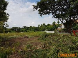 LS117 ขายที่ดินแปลงสวย พื้นที่ 103 ตรว.ซอยรามคำแหง 118 แยก 46 ที่ดินถมแล้ว เหมาะสร้างบ้าน สำนักงาน