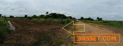 ขายที่ดินหนองเสือ คลอง11 เนื้อที่ 200 ตรว ใกล้วัดป่า คลอง11 หนองเสือ ทำดี เหมาะเกร็งกำไรในอนาคต