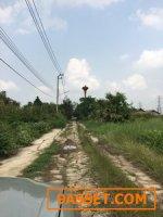 ขายที่ดินไทรน้อย ขนาด 200ตรว15000ต่อตรว ติดถนน2ด้าน อยู่ใกล้กับ อบต ไทรน้อยใกล้หมู่บ้านชวนชมพาร์ค2