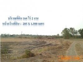 ขายที่ดิน 164-2-0 ไร่ ติดถนนเลียบคลองระพีพัฒน์แยกตก อ.วังน้อย จ.พระนครศรีอยุธยา ห่างถนนธัญบุรี หมายเลข 352  เพียง 300ม.