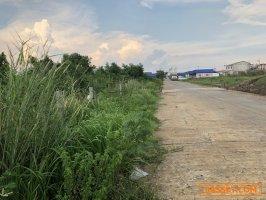 ขายที่ดินคลองหลวง คลองห้า ซอยหมู่่บ้านอมรทรัพย์ ที่ถมแล้ว พื้นที่63 ตรว