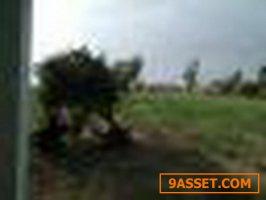 ขายที่ดิน 13-3-0 ไร่ ตำบลดงเมืองแอม อำเภอเขาสวนกวาง ขอนแก่น