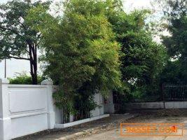 ขายที่ดิน ปากเกร็ด โครงการ 5 เมืองทองธานี ติดทะเลสาบ พื้นที่ 526 ตรว นนทบุรี