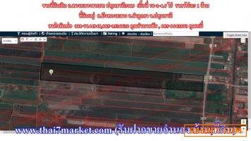 ขายที่ดินติด ถ.ทางหลวงชนบท ปทุมธานี3019 เนื้อที่ 78-1-4.6 ไร่  ราคาไร่ละ 1 ล้าน