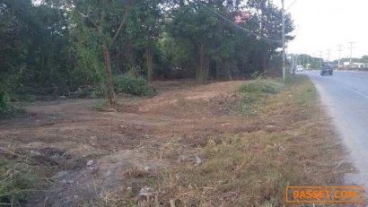 ขายด่วน ที่ดินเปล่า อ.สันป่าตอง ติดถนนหลวงสาย108 โซนพื้นที่สีชมพู ย่านชุมชน