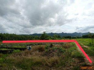 ขายด่วน ที่ดินติดถนนเส้นหลัก บรรยากาศดี ขนาด 11-1-75 ไร่ ทองผาภูมิ กาญจนบุรี โทร 095-2914978