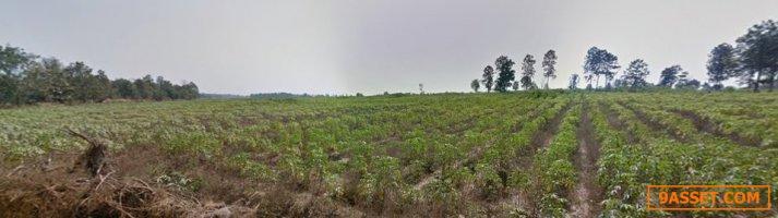 >> ขายที่ดินเปล่าแปลงใหญ่มากติดเป็นผืนเดียวกัน แปลงสวย มีแหล่งน้ำธรรมชาติ บ่อน้ำบาดาล จังหวัดกำแพงเพชร
