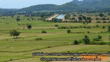 ขายที่ดินในนิคมอุตสาหกรรมอมตะ ซิตี้ ระยอง เนื้อที่ 26 ไร่  ราคาไร่ละ 2.5 ล้าน