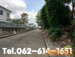 ขายที่ดินสวยเมืองทองธานี3/6 (มณีพิมาน) 93ตรว. ถมแล้ว แปลงมุม ซอยติวานนท์-ปากเกร็ด40 ทำเลดีมาก เดินทางสะดวกสุด ใกล้IMPACT ทางด่วน รถไฟฟ้าสายสีชมพู