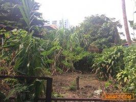 ที่ดินเปล่า 198 ตารางวา กรุงเทพนนท์ ใกล้สถานี MRT แปลงสวยสำหรับบ้านเดี่ยว