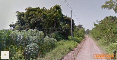 ขาย ที่ดิน แปลงใหญ่ เพชรบูรณ์ 253 ไร่ น้ำร้อน วิเชียรบุรี เหมาะทำโรงงาน หรือฟาร์มปศุสัตว์
