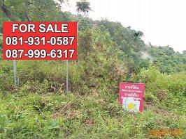 63200  ขาย ที่ดินเปล่า 14 ไร่ 3 งาน 29 ตตารางวา เกาะสมุย สุราษฎร์ธานี  ทำเลดี เหมาะทำธุรกิจ