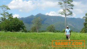 ขายที่ดินโฉนด23-2-81 ไร่ วิวเทือกเขาใหญ่ อยู่บนเนินสูงมวกเหล็ก จ.สระบุรี