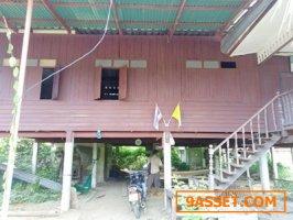 บ้านไม้ 2 ชั้น ตำบลพิกุลทอง อำเภอท่าช้าง สิงห์บุรี 202 ตรว.