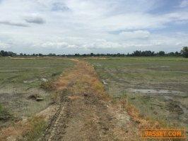 ขายที่ดิน ขายด่วนมาก 40-3-32 ไร่  อ.บ้านโป่ง ราชบุรี  หน้ากว้างติดถนน ประมาณ 130 ม.