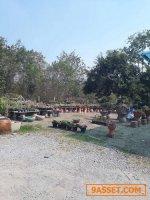 ขายที่ดินติดถนนมิตรภาพ  ติดตลาดต้นไม้โคกกรวด โคราช. 44ไร่.