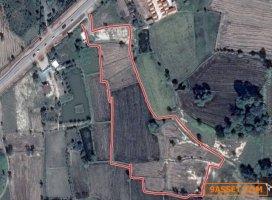 ขายที่ดินโคราช ตรงข้ามประปาด่านขุนทด 14 ไร่ 2 งาน เหมาะทำหมู่บ้านจัดสรร