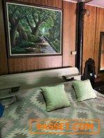 บ้านทรงไทย โฉนดร. 5 บนที่ดิน 7 ไร่ ศรีประจันต์ สุพรรณบุรี ด้านหน้าติดแม่น้ำท่าจีน ด้านหลังติดถนนใหญ่
