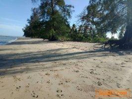 ขายที่ดินติดถนนติดทะเล จังหวัดชุมพร ติดถนนใหญ่และชายหาดส่วนตัว 9 ไร่ 3 งาน