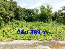 61527 ขาย ที่ดินเปล่า 389 ตรว. ถนนพุทธมณฑลสาย 2 ซอย 21 หน้ากว้าง 30x52 ม.