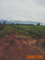 ขายที่ดินเขาใหญ่ 8 ไร่ ขายไร่ละ 3 ล้าน เอกสารสิทธ์ เป็น นส.3ก มองเห็นวิวเขาใหญ่และทอสกาน่า ชัดเจน