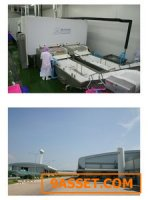ขายด่วน ถูกมาก โรงงานอาหารทะแลและห้องเย็นต. บ้านบ่อ สมุทรสาคร 25 ไร่ เครื่องจักรพร้อม