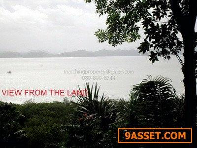 ที่ดิน ภูเก็ต สวนยางพารา  36 ไร่ อ.ถลาง ใกล้ทะเล เหมาะทำรีสอร์ท 140 ล้านบาท
