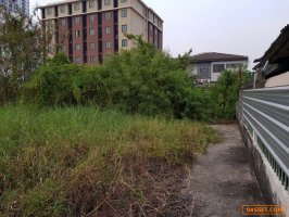 Land for Sale - Land 178.5 sq.Wa Intamara 3 Private Zone, Near BTS Sapankwai