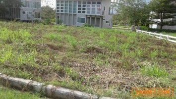 ขายที่ดินจัดสรร แปลงสวย ในโครงการภูภัทรา 1 ไร่ 289 ตรว.