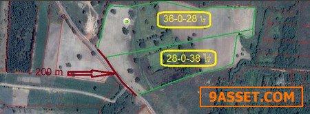ขายด่วน ที่ดินพื้นที่สีม่วง 64ไร่กว่า ทำเลดีสุดๆ ห่างจากนิคมอุตสาหกรรมเกตเวย์ 1 กิโลเมตร