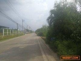 ายที่ดินติดถนนลำลูกกาคลอง 9  ปทุมธานี  เนื้อที่ 200 ตรว.  (พื้นที่สีม่วงเข้ม)