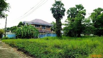 ขาย ที่ดิน 82 ตารางวา ท่าอิฐ 14  ไทรม้า  เมืองนนทบุรี สร้างบ้านเดี่ยว ทำสำนักงาน