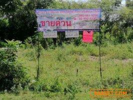 ที่ดิน  เนื้อที่  42-1-88 ไร่ ติดถนนทั้ง 2  ด้าน อ. บ่อพลอย  จ.กาญจนบุรี