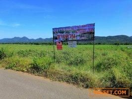ที่ดิน  เนื้อที่  115-0-63 ไร่  ติดกับแม่น้ำแควใหญ่ อ. เมือง จ.กาญจนบุรี
