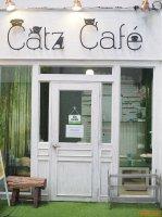 เซ้งร้านคาเฟ่แมว นักศึกษาเยอะ @ใกล้สาธิตจุฬา,คณะนิติศาสตร์ ( ตึกยูเซนเตอร์ )