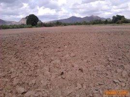 64310 ขาย ที่ดินเปล่า ที่ดินสวนเกษตร 7 ไร่ 3 งาน 90 ตร.ว. หัวหิน ประจวบคีรีขันธ์