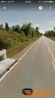 ที่ดินติดทางหลวงเส้น2033 จ.นครพนม ติดถนนทางหลวงแผ่นดินสายนครพนม-นาแก