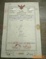 ขายที่ดินทางขึ้นลงสระบุรี 5ไร่ ที่ดินติดถนน หนองจิก