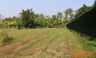 ขายที่ดินเปล่า  2 ไร่ 1 งาน หมู่บ้านโอเชี่ยนวิว บางเสร่ เหมาะสร้างบ้านที่อยู่อาศัย ใกล้หาดบางเสร่