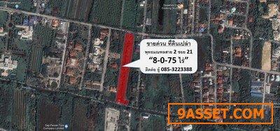 ขายด่วนที่ดินราคาต่ำกว่าตลาด 8 ไร่ พุทธมณฑลสาย 2 ซอย 21 ติดถนนเมนคอนกรีตใหญ่กว้าง 8 เมตร