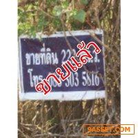 ที่ดินเปล่า ตำบลคลองหก อำเภอคลองหลวง ปทุมธานี 222 ตรว.