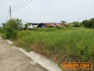ขาย ที่ดิน 436 ตรว,ถนนพุทธมณทลสาย 2 ซอย 33 บ้านเดี่ยว เทคโนโลยีปิ่นมงคล